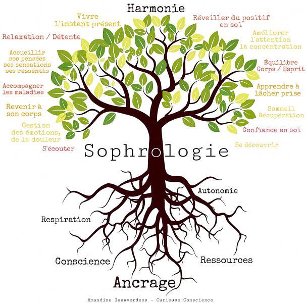 Arbre sophrologie